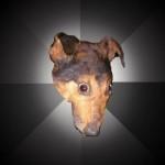 depression_dog